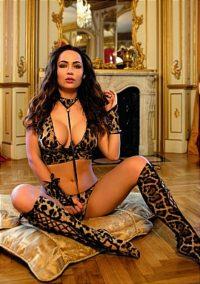 Erotik leopar kedi kostümü